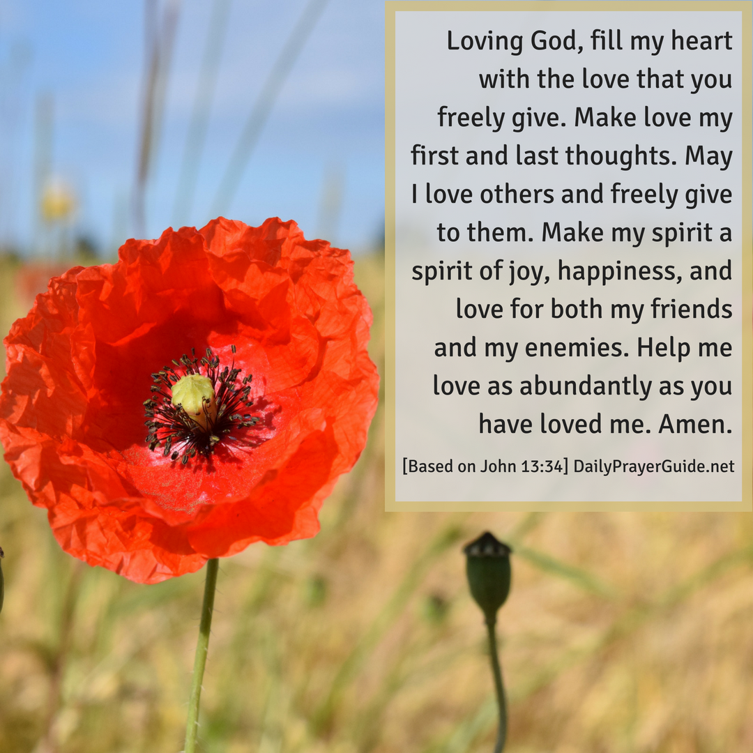 A Prayer to Love One Another [John 13:34] - Daily Prayer Guide